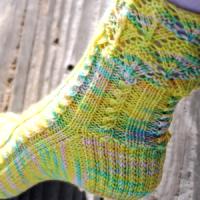Springtime Socks